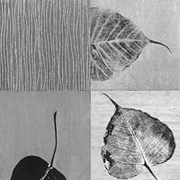 Leaf Quad Fine Art Print