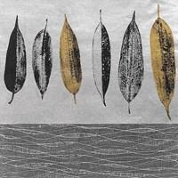 Row of Leaves Fine Art Print