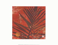 Exotic Palm Framed Print