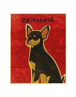 Chihuahua (black and tan) Fine Art Print