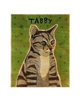 Tabby (grey) Fine Art Print