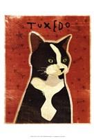 Tuxedo Fine Art Print