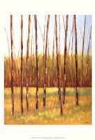 Tall Trees I (left) Fine Art Print