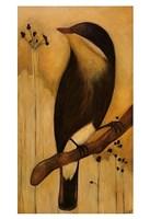 Bird I Fine Art Print