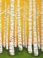 Autumn Birches Fine Art Print