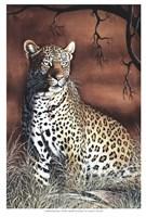 Sitting Leopard Fine Art Print