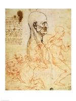 Torso of a Man in Profile, the Head Squared for Proportion Fine Art Print