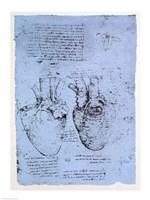 The Heart Framed Print