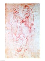 Study of a Horse and Rider, c.1481 Framed Print