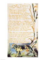 The Tyger, from Songs of Innocence Framed Print