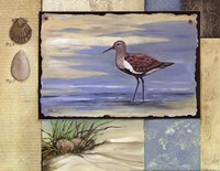 Sandpiper Collage II mini Framed Print