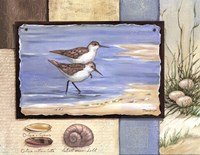 Sandpiper Collage I - mini Fine Art Print