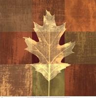 Fall Leaf II Fine Art Print