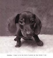 Rupert Framed Print