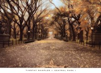 Central Park I Fine Art Print