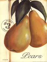 Organic Pears Fine Art Print