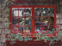 Window with Flowers I Fine Art Print