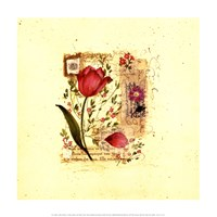 Flower Notes with Purple Tulip Fine Art Print
