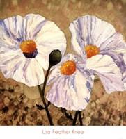 Paper Whites Fine Art Print