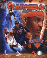 Carmelo Anthony 2011 Portrait Plus Fine Art Print