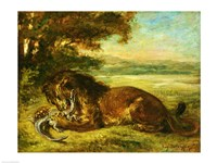 Lion and Alligator, 1863 Fine Art Print
