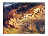 Tiger and Lion Fine Art Print