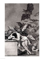The Sleep of Reason Produces Monsters Fine Art Print