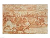 Bullfighting Fine Art Print