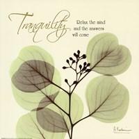 Tranquility Eucalyptus Fine Art Print