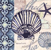 Trade Wind Scallop Fine Art Print