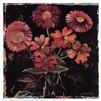Floral Mix II Framed Print