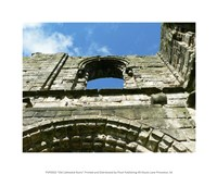 Old Cathedral Ruins Fine Art Print