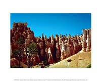 Scenic Shot from Bryce Canyon National Park Fine Art Print