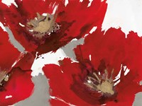 Red Poppy Forrest II Fine Art Print