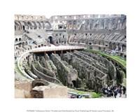 Coloseum Ruins Fine Art Print