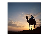 Silhouette of a man on a camel, Giza, Egypt Fine Art Print