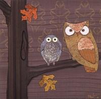 Awesome Owls IV Framed Print