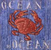 Coastal USA Red Crab Framed Print