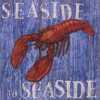 Coastal USA Lobster Framed Print