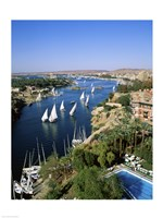 Sailboats In A River, Nile River, Aswan, Egypt Vertical Landscape Fine Art Print