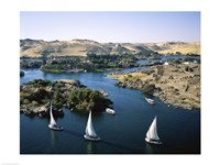 Sailboats In A River, Nile River, Aswan, Egypt Landscape Fine Art Print