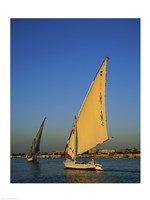 Sailboats sailing in a river, Nile River, Luxor, Egypt Framed Print