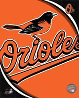 2011 Baltimore Orioles Team Logo Fine Art Print