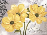 Colori Yellow I Fine Art Print
