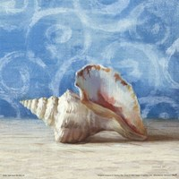 Gifts from the Sea IV Fine Art Print