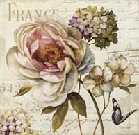 Marche de Fleurs III Fine Art Print