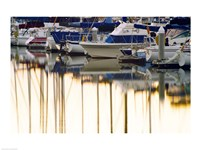 USA, California, Santa Barbara, boats in marina at sunrise Fine Art Print