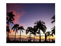 Silhouette of palm trees on the beach, Waikiki Beach, Honolulu, Oahu, Hawaii, USA Framed Print