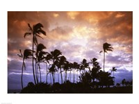 Lydgate State Park Kauai Hawaii USA Fine Art Print