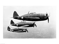 P-47 Thunderbolt Fine Art Print